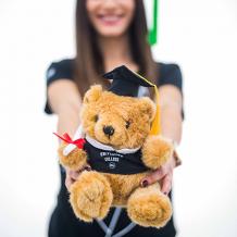 Teddybeer Graduation PXL